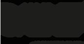 DavyCroket logo