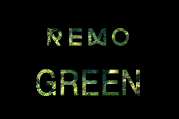decouverte-green-life-with-remo-header-davycroket