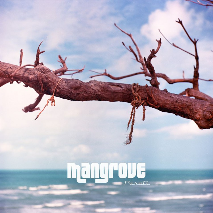 decouverte-le-rap-de-mangrove-parati-cover-artwork-davy-croket-review